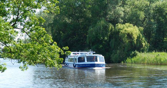 Auf der Dove Elbe schippert man durch Hamburgs idyllischen Landbezirk