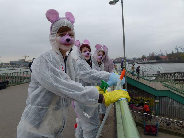 Mäuse an den Hamburger Landungsbrücken