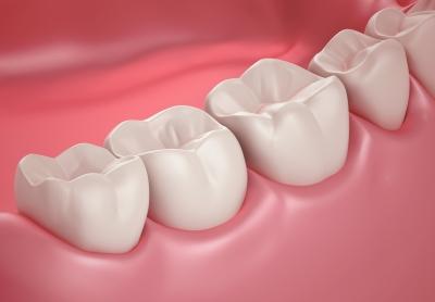 Zahnversicherungsschutz