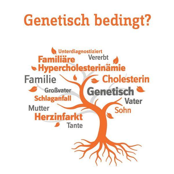Fakten rund um Cholesterin: Genetisch bedingt?