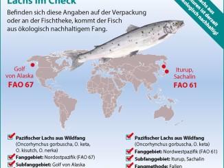 Wie erkenne ich beim beliebten Speisefisch Lachs ein ökologisch vertretbares Angebot