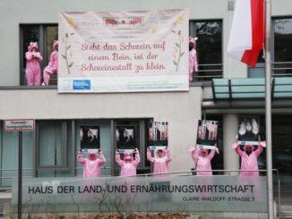Als Schweine verkleidete Aktivisten des Deutschen Tierschutzbüros haben das Vordach des Deutschen Bauernverbands besetzt