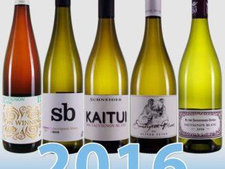 Sauvignon Blancs 2016 aus der Pfalz von den Kultwinzern ist da
