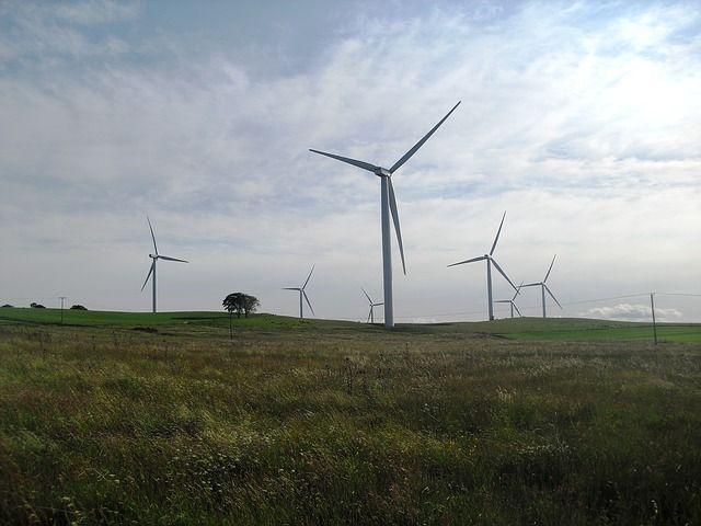 Viele Windkraftanlagen verschönern die Natur in Norddeutschland