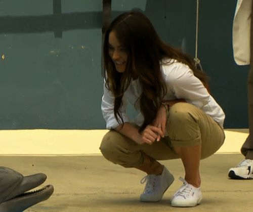 Megan Fox entdeckt die Welt der Delfine