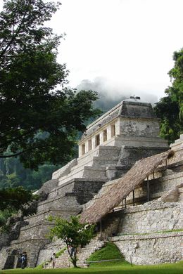 Bereits die Maya nutzen Kakao als Zahlungs- und Genussmittel