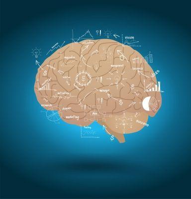 Unser Gehirn - ein recht kompliziertes Organ