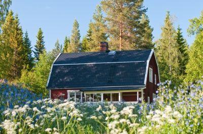 Traumhaftes Urlaubsziel für Radler: Schweden im Sommer