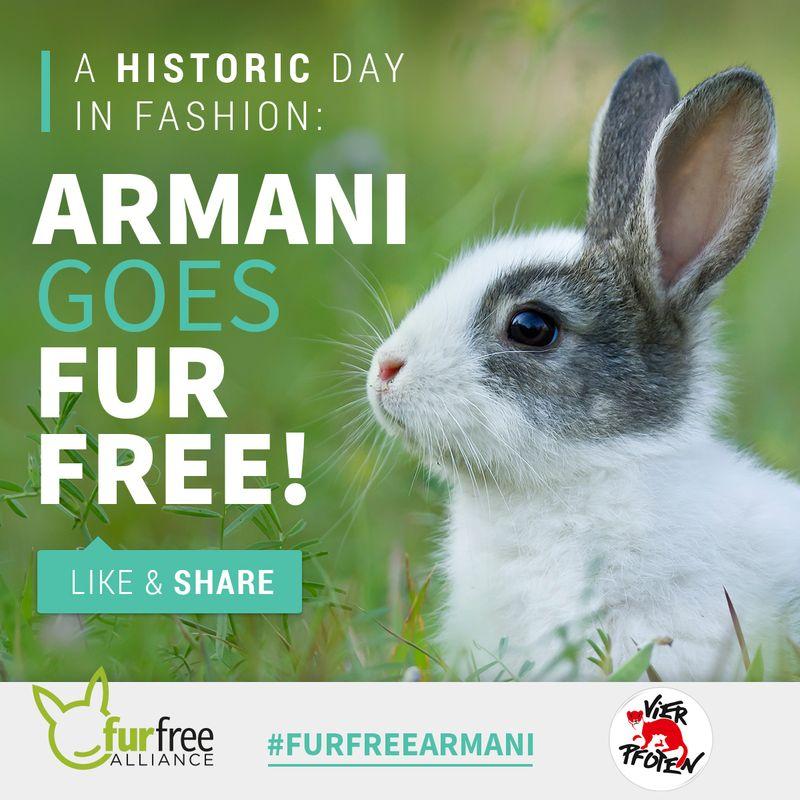 Das freut auch den Osterhasen - Armani wird pelzfrei