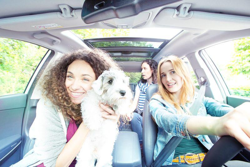 Bei BlaBlaCar reisen Tiere mit