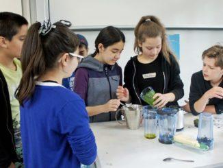 """Im Workshop """"Chefkoch"""" stellen Schülerinnen und Schüler der fünften und sechsten Klassen Pesto selber her"""