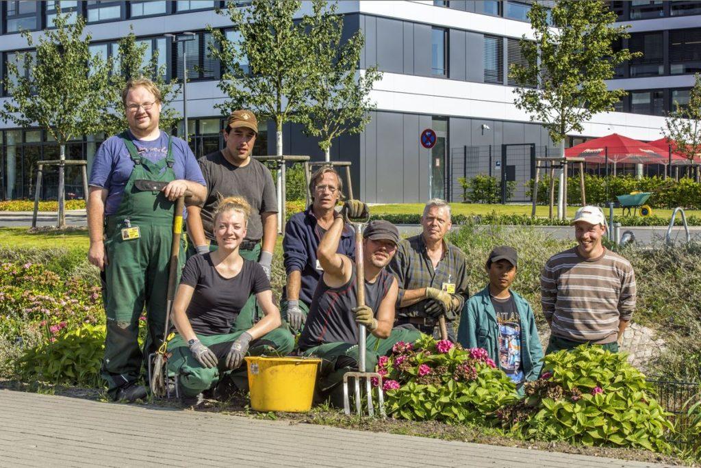 Voller Einsatz: Die Mitarbeiter der Elbe-Werkstätten bei ihrer Arbeit auf dem Tesa Campus