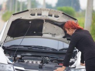Marderbiss kann zu einem richtigen Motorschaden führen