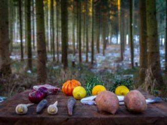 Fein-lässige Waldpartie in Südniedersachsen