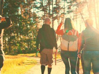 Digital Detox im ersten Ferienlager für Erwachsene