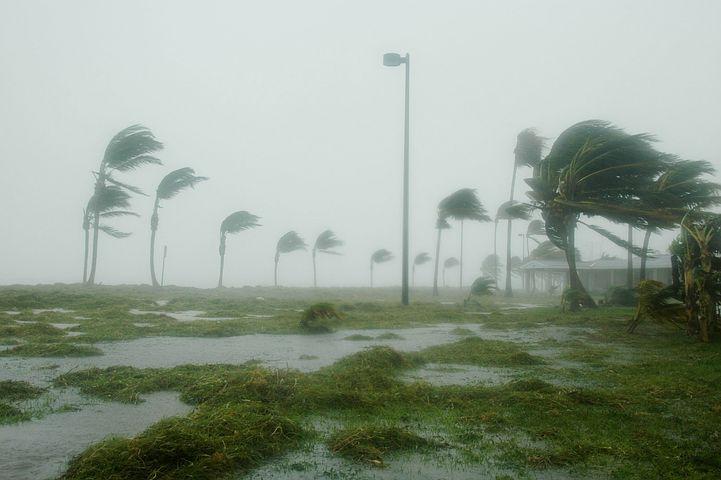 Und so sieht es unten aus - hier Key West in den Staaten