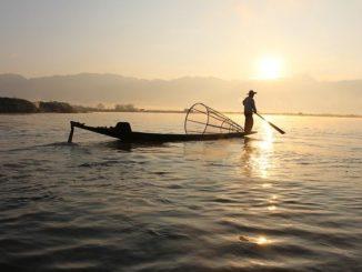 Fischeridylle auf dem Gewässer