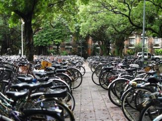 Hier dreht sich alles um das Fahrrad