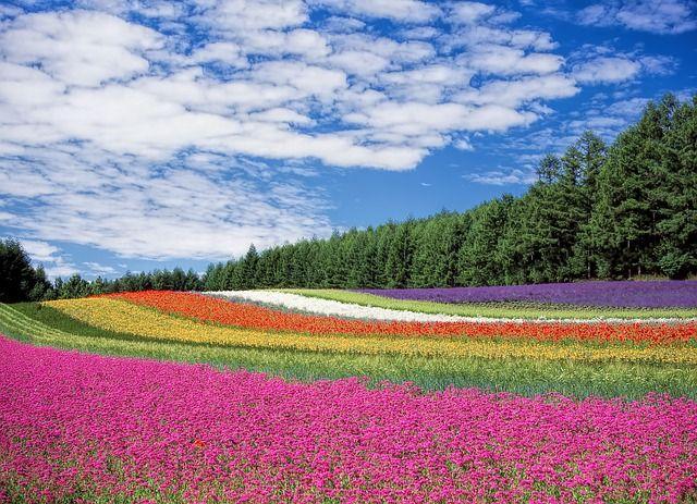 Farben beeinflussen Stimmungen, Gefühle und Emotionen