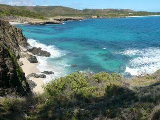 Der Ruf der Karibik