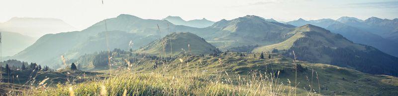 Die Kitzbüheler Berge locken auch im Sommer viele Erholungssuchende an