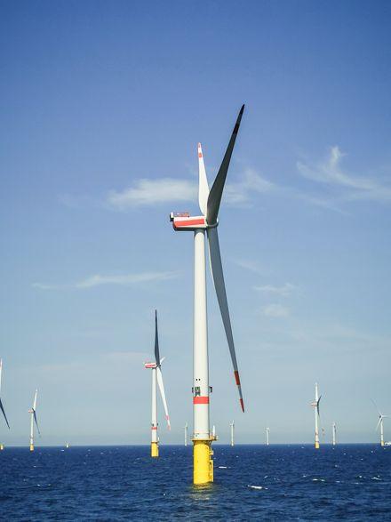 Offshore-Windpark Deutsche Bucht