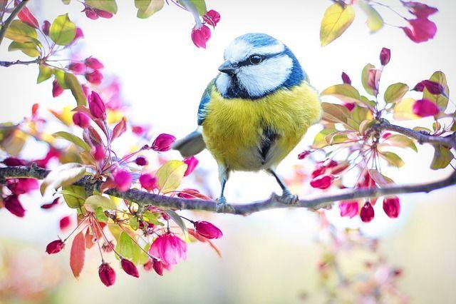 Schöne Farben bringen positive Energie und gute Laune