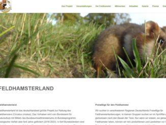 Screenshot Website feldhamster.de - Tierschutz für heimische Arten kommt zu kurz