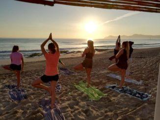 Mit Yoga zum Sonnenaufgang beginnen die Wohlfühlprogamme des Grupotel Gran Vista & Spa auf Mallorca.
