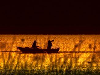 Natur und Jagt: Angleridylle auf dem See