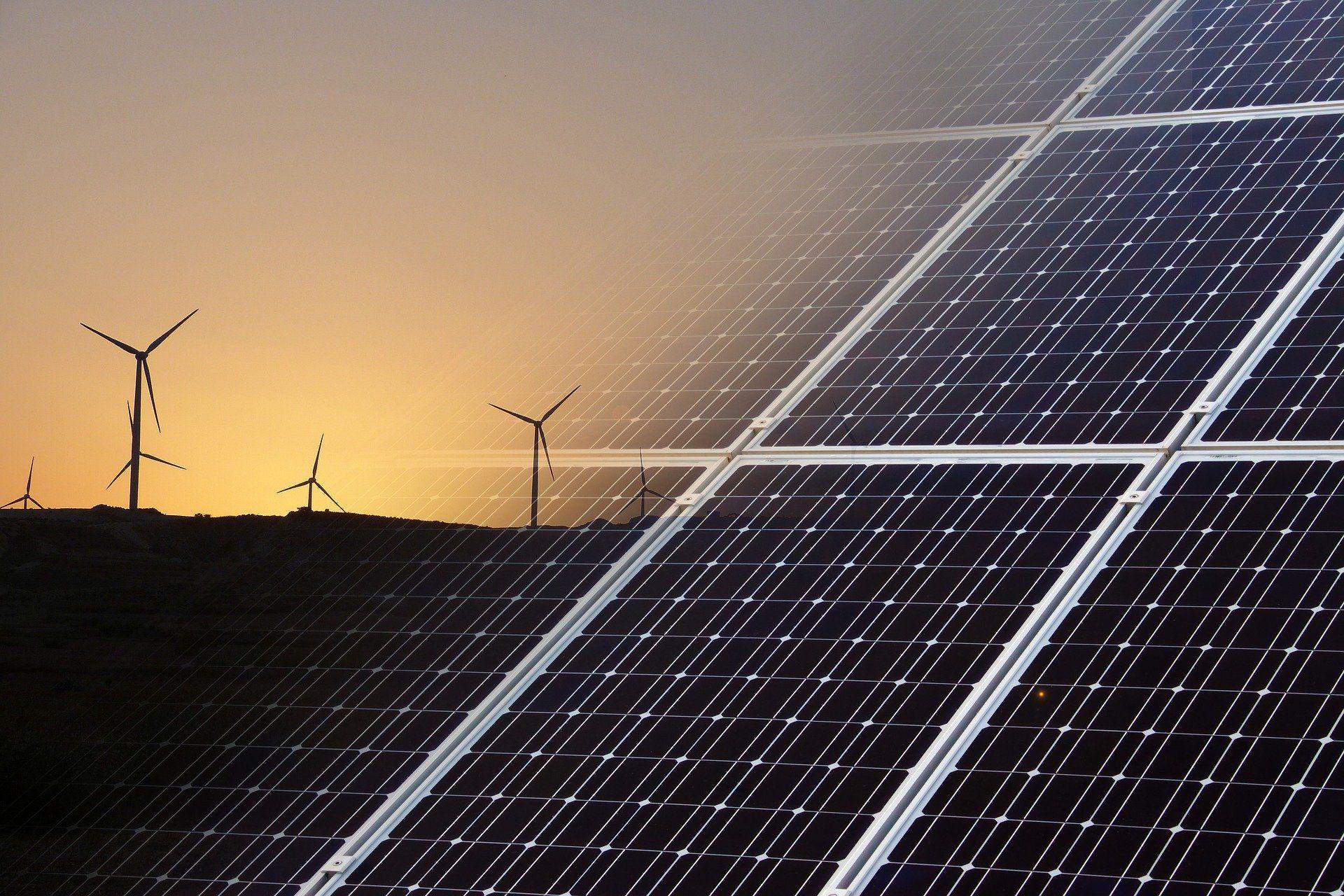 """Die tollen """"Erbeuerbaren Energien"""" zerstören die Umwelt grossflächig"""