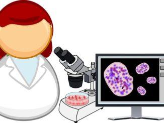 Forschung muss sein, geht aber auch ohne Tierversuche