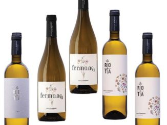 Wein aus Mallorca - Bodegas Bordoy terra de marès