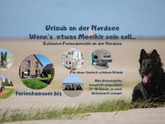 Urlaub mit Hund im Nationalpark Wattenmeer