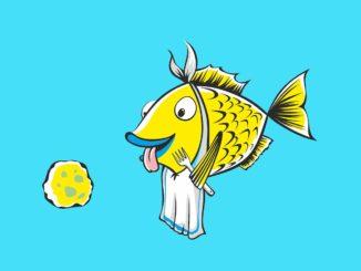 Fisch erfretu sich grosser Beliebtheit