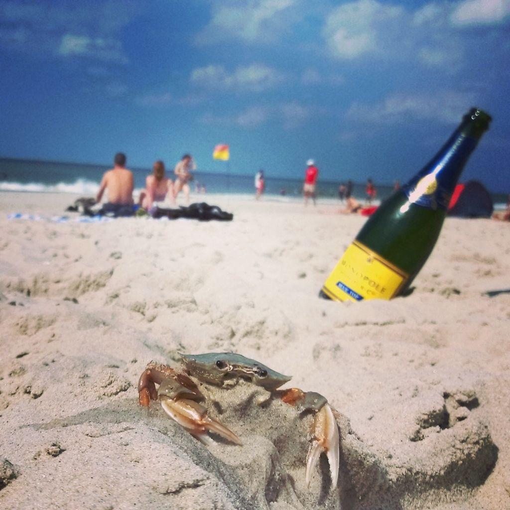 Beachlife Sylt Krebs und Schampus