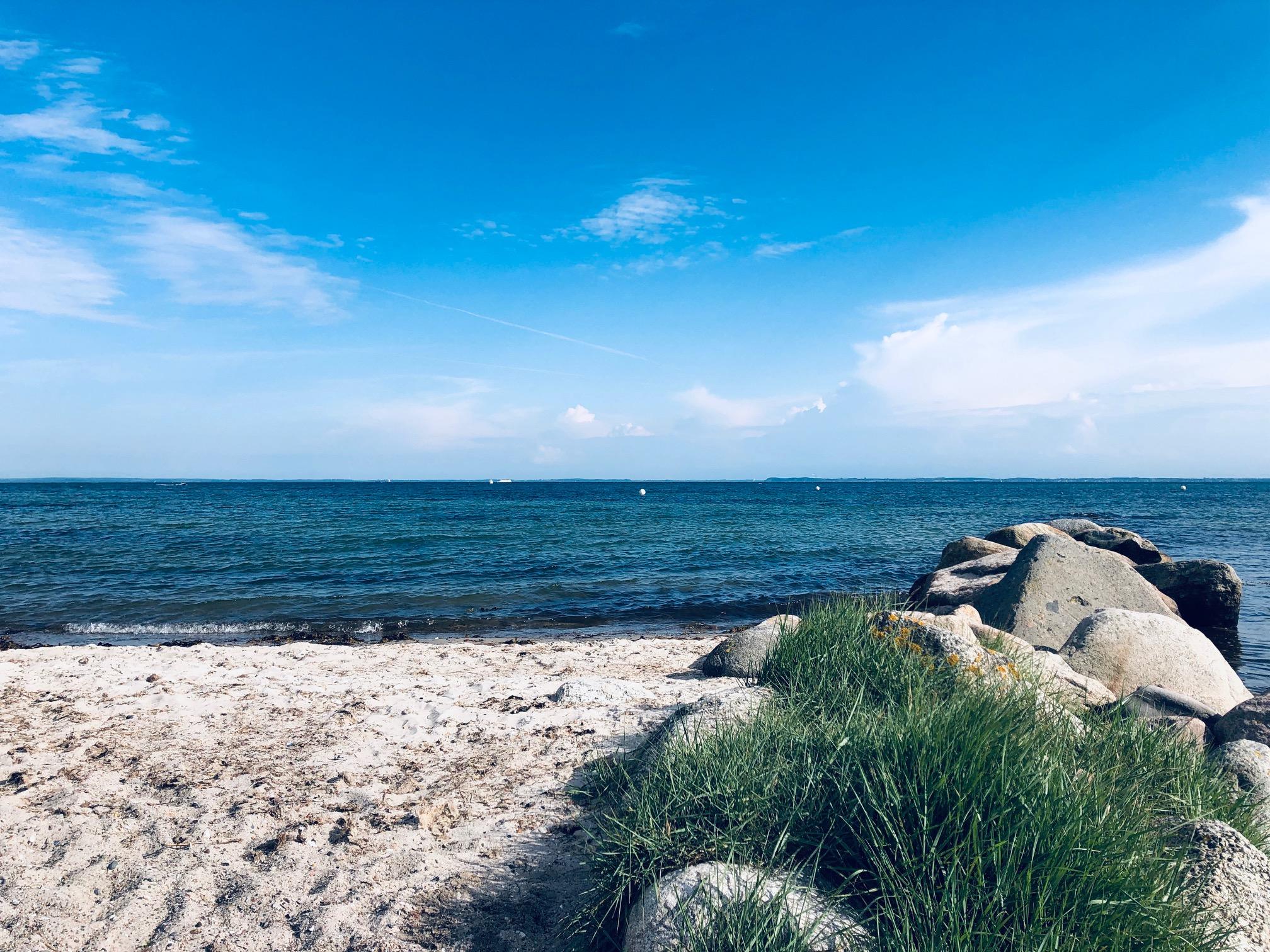 Und auch die Ostsee wird immer beliebter